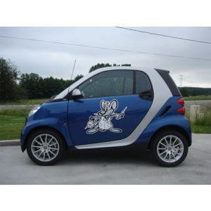 adhésif publicitaire pour voitures
